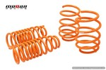 Genesis Coupe Megan Racing Lowering Springs 2010 - 2013